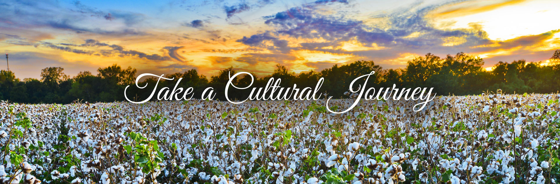 A Cultural Journey